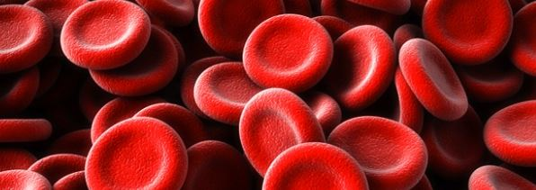 rodebloedcellen